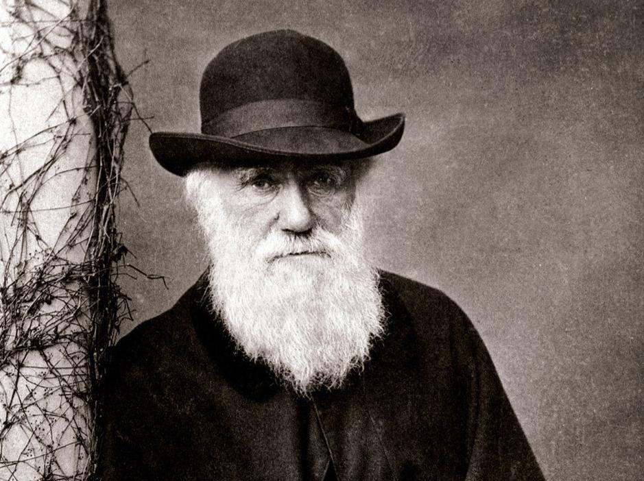 Le salut de Charles Darwin à la respectitude.